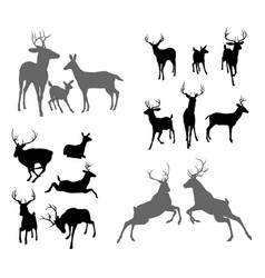 Deer stag fawn and doe silhouettes vector