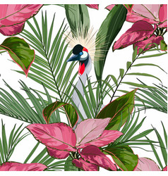 exotic birds palm leaves white background vector image