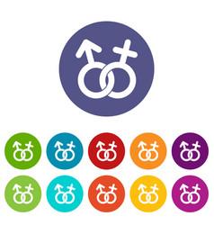 gender symbol icons set flat vector image