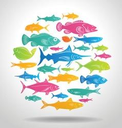 fish logo vector image