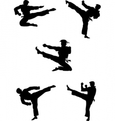 karate fighters silhouettes vector image vector image
