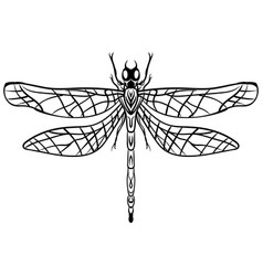 hand drawn sketch dragonfly tattoo vector image vector image