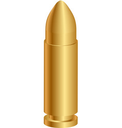 gold bullet vector image