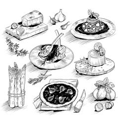 hand drawn with Italian food vector image