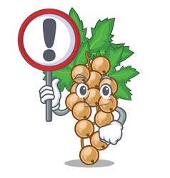 With sign white currant isolated with the cartoons vector