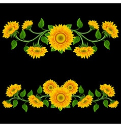 yellow sunflowers on the black background design e vector image
