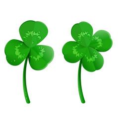 set green shamrock clover leaf with dew drops vector image