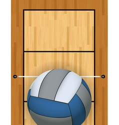 Volleyball and Volleyball Court vector