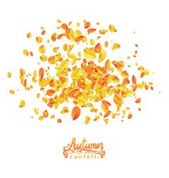 autumn leaves particles vector image vector image