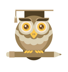 wise owl with pencil university graduation vector image vector image