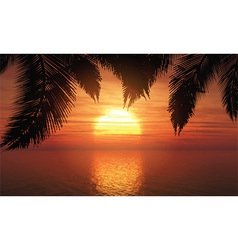 palm trees against sunset sky 1305 vector image