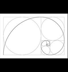 Golden ratio geometric concept fibonacci spiral vector