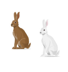 Rabbit hare animal flat icon vector
