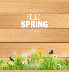 Spring in grass against a wooden background vector