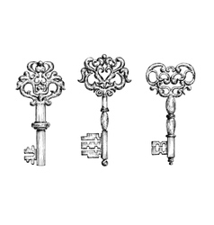 Vintage ornate skeleton keys in sketch style vector image vector image