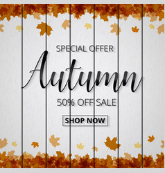 Autumn sale poster or banner for shopping with vector