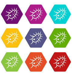 Bacteria centipede icon set color hexahedron vector