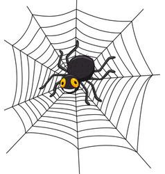 Cartoon spider on cobweb vector