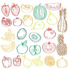 fruits and vegetables in the context of vector image