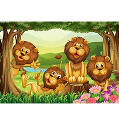 Lion living in the jungle vector image vector image