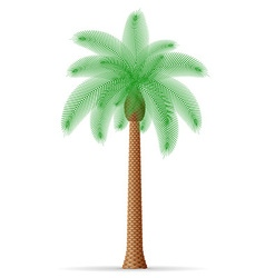 palm tree 21 vector image