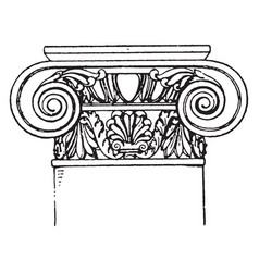 Roman-ionic capital a design of a scroll rolled vector