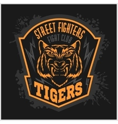 Street fighters - Fighting club emblem on dark vector image