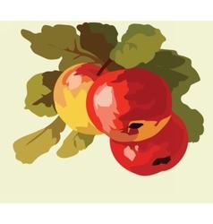 Apple fruits Watercolor vector image