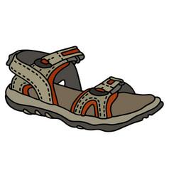 Beige sport sandal vector