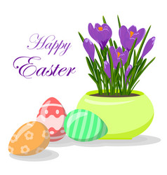 Easter eggs and violet crocuses in yellow pot vector