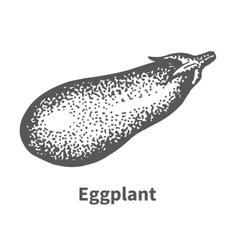 Hand-drawn eggplant vector