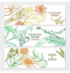 Natural Healthy Plants Horizontal Banners vector image