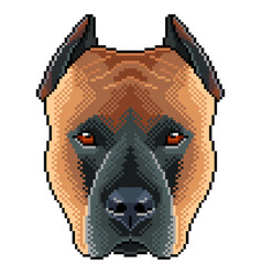 pixel staffordshire dog portrait detailed isolated vector image