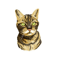 Striped cat head with neck vector