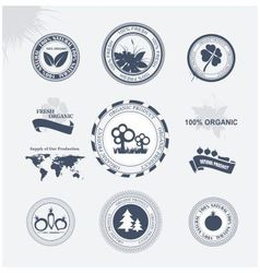 Labels eco vector image