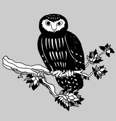 hand drawn doodle of the owl vector image vector image