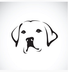 a dog headlabrador retriever on white vector image