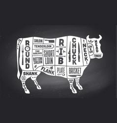 cow beef scheme diagram chart pork butcher vector image