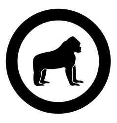 gorilla black icon in circle vector image