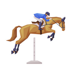 jockey overcoming obstacles on racing horse vector image