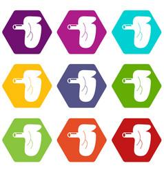 Kidney icons set 9 vector