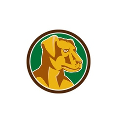 Labrador Golden Retriever Dog Head Circle Retro vector image