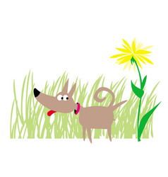 little dog and flower in park vector image