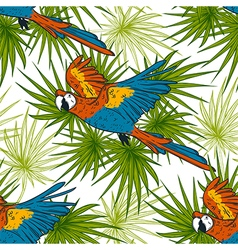 pattern with macaw parrots and palm leaves vector image