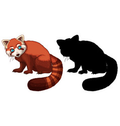 red panda cartoon character its silhouette on vector image