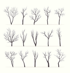 trees with bare branches silhouette set vector image
