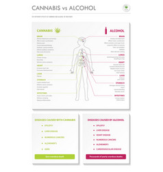 Cannabis vs alcohol vertical business infographic vector