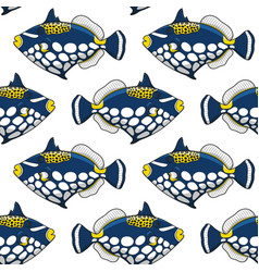 seamless pattern with clown triggerfish fish vector image