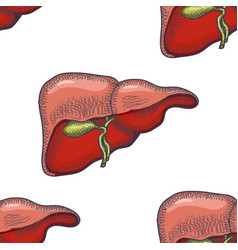 sketch ink human liver seamless pattern vector image