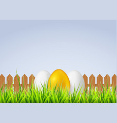 three eggs on a grass for vector image